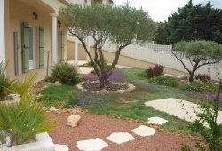 location au pin parasol aux trois oliviers Vauvert